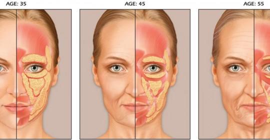 El envejecimiento facial